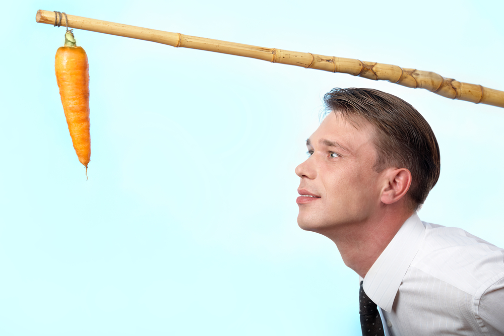 Managing - The Carrot or the Stick? - Optimum Consulting