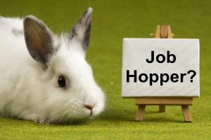 job_hopper